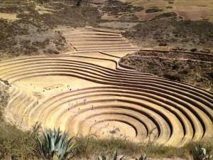 Terassenfelder von Moray