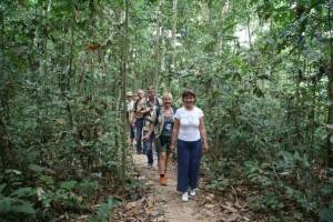 Wanderung dur den tropischen Regenwald